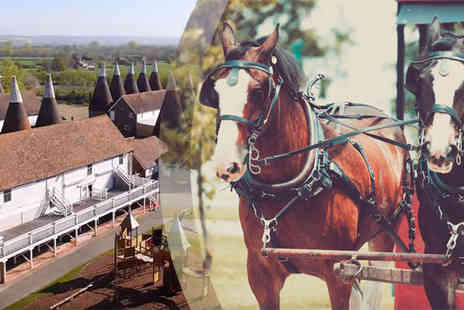 Activity Gift Vouchers  - 2 for 1 Shire Horse Experience - Save 50%