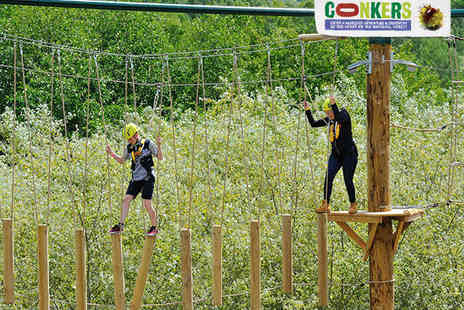Conkers - Awesome 4Some Aerial Adventure Ticket with Main Course and Soft Drink  - Save 49%