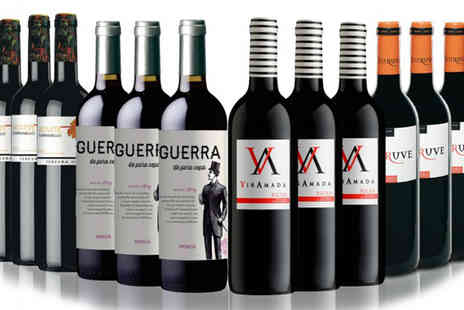 IBERVILLA FINE FOODS - Choice of Spanish Wine Cases - Save 55%