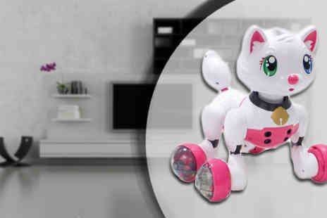 Stylematch Online - Voice Activated Kitty or Puppy Pet Toy - Save 71%