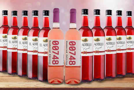 GLOBAL DEALS RIOJA PREMIUM - 12 Bottles of Spanish Rose Wine Edition - Save 72%