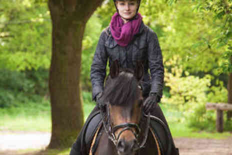 Sweetlands Riding School - Hour Long Hack or Riding Lesson - Save 0%