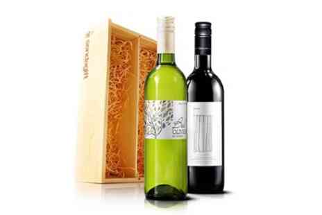 Virgin Wines Online - Three Bottle Gift Pack of Wine inc Presentation Box - Save 49%