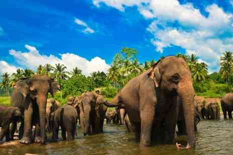 Sri Lanka Round Trip - Explore Sri Lanka during Twelve Nights Stay including flights, excursions, breakfast - Save 0%
