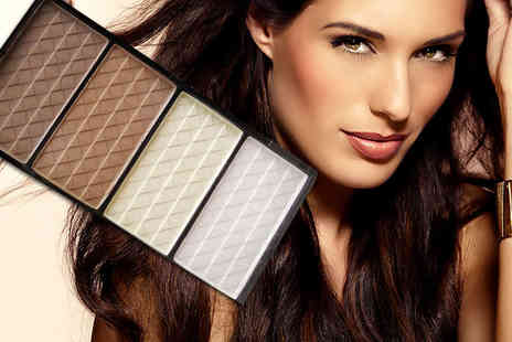 Alvis Fashion - Four colour pressed powder contour palette - Save 84%