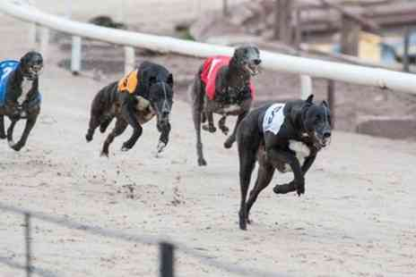 Coventry Independent Greyhounds - Admission to Coventry Independent Greyhounds with Racecard, Pie and Drink from 12 December  to  27 February   - Save 52%