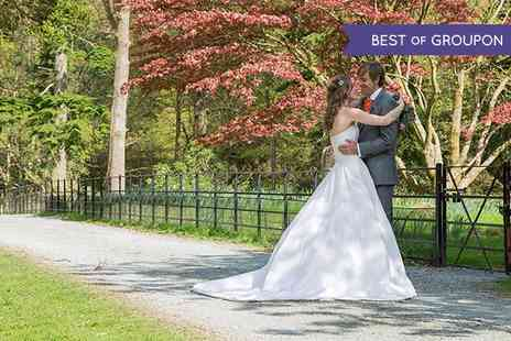 Big Lime Photography - Wedding Photography Package with Up to Nine Hour Coverage  - Save 0%