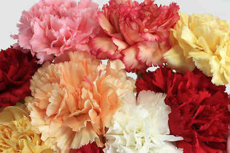Garden wants - Mixed Carnations Bouquet - Save 38%