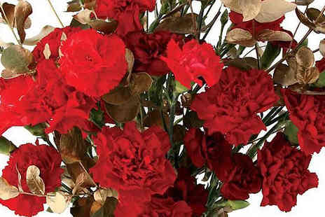 Garden wants - Red And Gold Carnations Bouquet - Save 34%