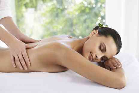 Steliana - One Hour Swedish or Deep Tissue Massage - Save 66%