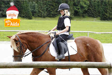 Bridleways Equestrian Centre - Horse riding lesson - Save 58%