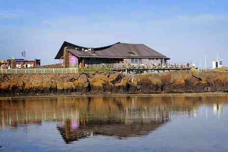 Scottish Seabird Centre - Entry for two adults to the award winning Scottish Seabird Centre - Save 66%