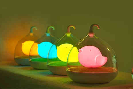 Heads Group - Touch control LED bird light in one of four colours - Save 63%