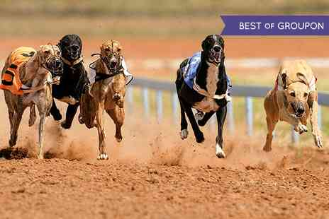 Love The Dogs - Greyhound Racing With Burger and Drink For Two  - Save 74%