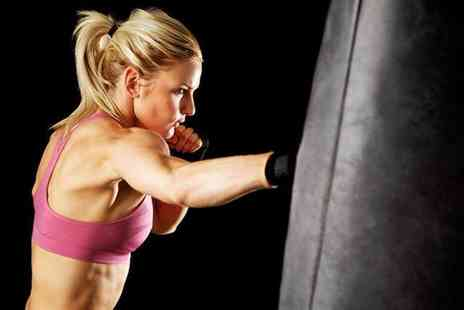Elemental Kickboxing Academy - 10 kickboxing fitness lessons lasting 90 minutes each  - Save 80%