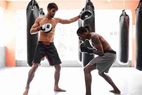 Trojan Free Fighters - Ten Mixed Martial Arts Classes  - Save 68%