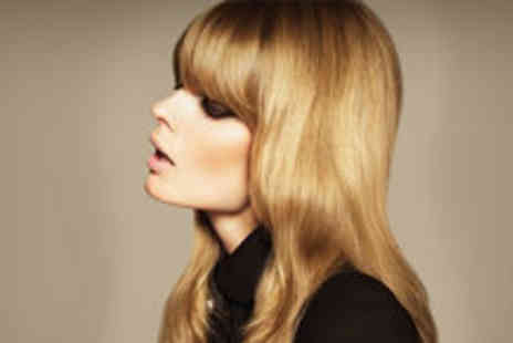 Leticia Haute Coiffure - Half head of highlights or a full colour tint, plus a wash, cut - Save 76%