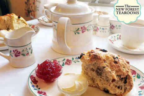 The New Forest Tea Rooms - Cream Tea for Two - Save 0%