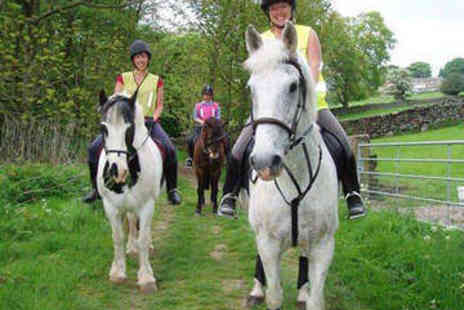 Bewerley Riding Centre - Hour Long Horse Riding Lesson - Save 68%