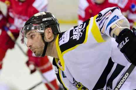 Bracknell Bees - Entry to Bracknell Bees Ice Hockey Games  - Save 48%