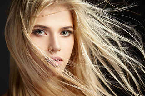 ENVI Hair and Beauty Lounge - Half head of highlights, cut and blow dry with a senior stylist - Save 74%