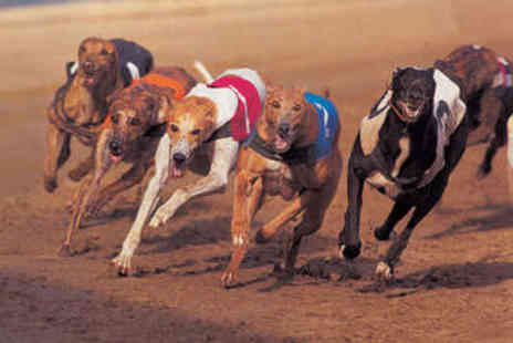 Love the Dogs - Entry to Greyhound Racing with Burger for Two - Save 74%