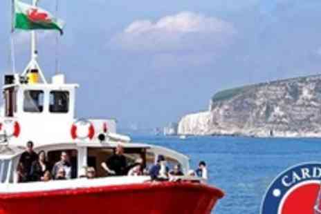 Cardiff Cruises - Four Adult Tickets for Sightseeing Boat Tour - Save 52%