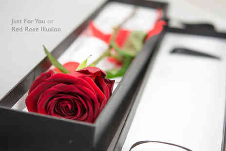 Cavanis Flowers - Red Rose Illusion or Just For You rose box - Save 70%