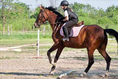 Gatend Equestrian - One Hour Hacking for One  - Save 0%
