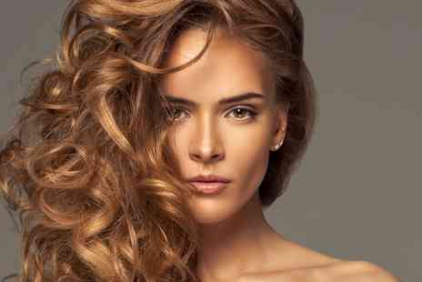 Brown and White  - Womens Cut, Blow Dry and Conditioning with Optional Colour or Highlights  - Save 30%