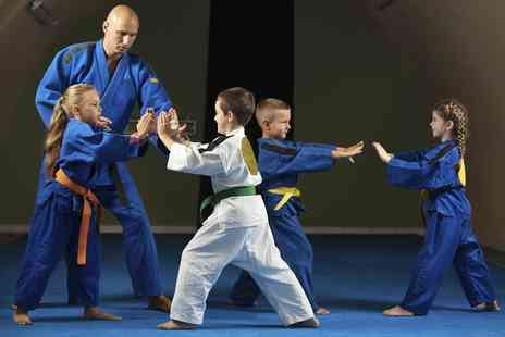 Fuzion Martial Arts - One Month of Karate Classes  - Save 69%