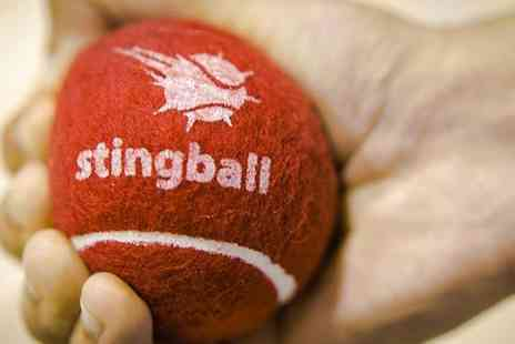 Stingball - One or Two Sessions of Stingball  for Up to Five People - Save 0%