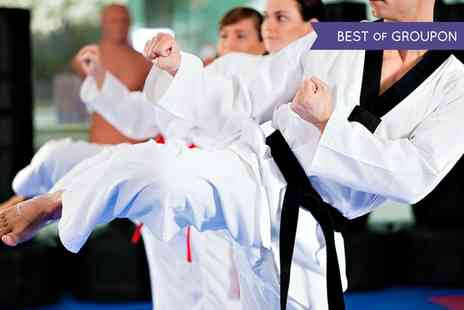 Move GB - 10 Martial Arts Classes - Save 80%