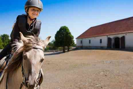 Wellybobs Farm Park - Entry for Child and Adult Plus Childs Pony Experience - Save 0%