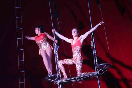 Tony Hopkins Entertainment  -  Netherlands National Circus Front circle Ticket - Save 46%