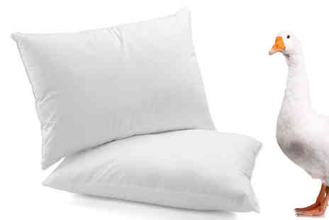 Z & U ONLINE - Luxury Hotel Quality Goose Feather and Down Pillows - Save 69%