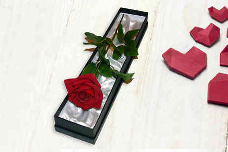 Giftright - Luxury Artificial Rose With Gift Box - Save 73%