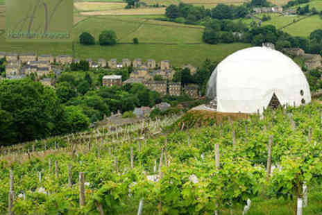 Holmfirth Vineyard - Vineyard Tour, Tasting, Plus Bucks Fizz Brunch for Two  - Save 50%