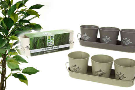 CFS Trading - Three Vintage Style Planters - Save 50%