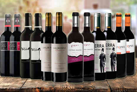 IBERVILLA FINE FOODS - Spanish Red Wine Collection - Save 58%