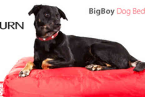 Infurn - BigBoy Dog Bed 80cm x 60cm - Save 58%