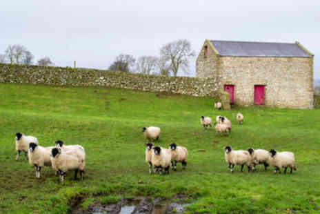 Viator - Full Day Yorkshire Dales Winter Tour from York - Save 0%