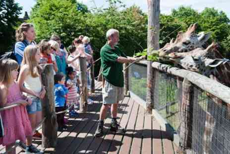 ZSL London Zoo - Visit to ZSL London Zoo for Two Adults and One Child - Save 0%
