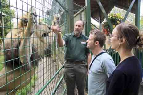 Paradise Wildlife Park - Entry to Park and Feed the Big Cats for Two - Save 0%