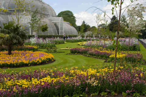Kew Gardens - Visit to Kew Gardens and Palace with Afternoon Tea for Two - Save 0%