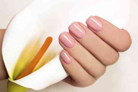 Total Perfection Beauty - Gel Manicure, Pedicure or Both - Save 0%