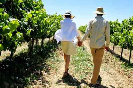 Cwm Deri Vineyard -  Pembrokeshire Vineyard Walk & Wine Tasting for Two - Save 47%