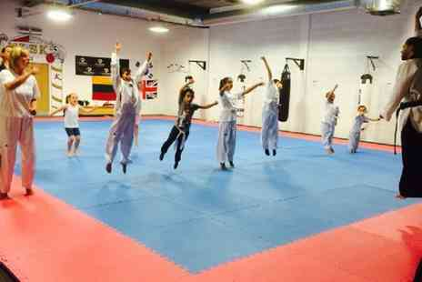 Dragon Taekwondo Academy - Two or Four Lessons for Child or Adult  - Save 60%
