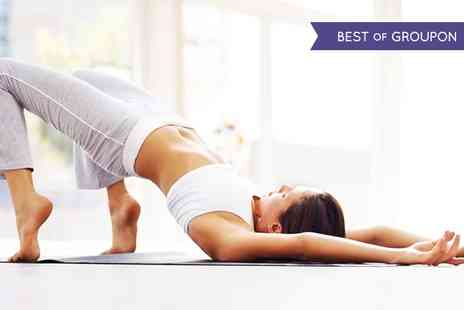 Yoga Download -  One Year Yoga Access  - Save 65%