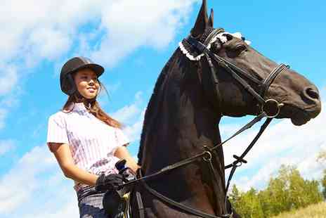Edinburgh Lasswade Riding School - One Horse Riding Lesson or Hack  - Save 50%